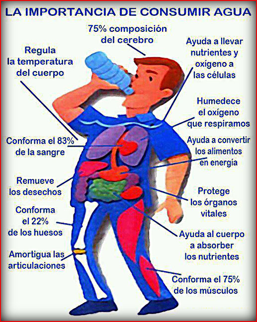 Agua-Esencial-Para-La-Vida